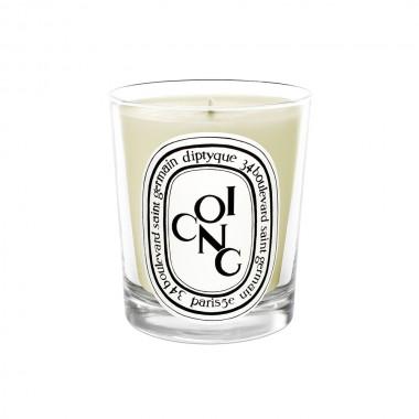 diptyque香氛蜡烛-木梨190g