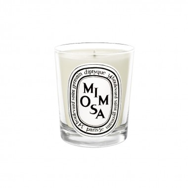 diptyque香氛蜡烛-含羞草190g